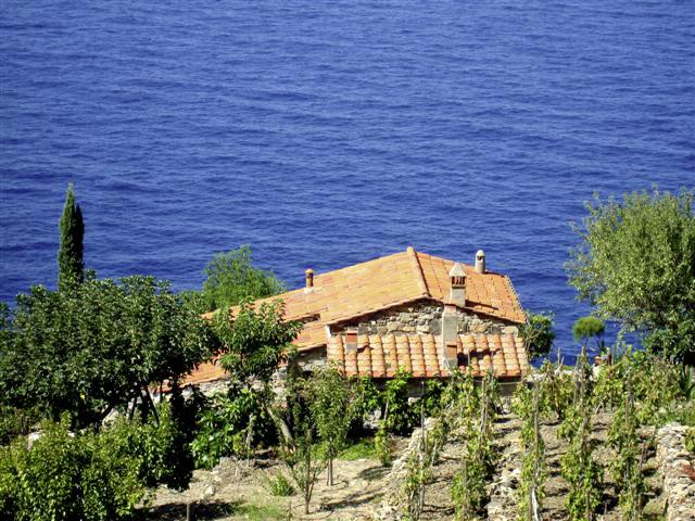 mediterran wohnen mit spanischen und mediterranen fliesen von casa 1. Black Bedroom Furniture Sets. Home Design Ideas